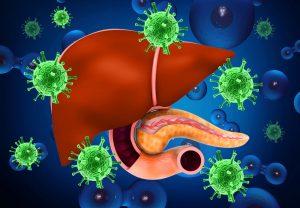 التهاب الكبد الوبائى B والتهاب الكبد الوبائى C